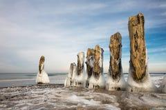 Inverno sul Mar Baltico Fotografia Stock