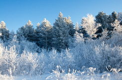 Inverno sul passaggio Immagine Stock Libera da Diritti