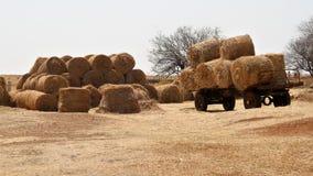 Inverno sull'azienda agricola nel nord-ovest, Sudafrica immagine stock libera da diritti