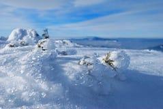 Inverno sulla montagna Fotografia Stock Libera da Diritti