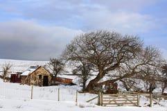 Inverno sulle colline di Lingua gallese Fotografia Stock