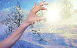 Inverno Sun Fotografia de Stock