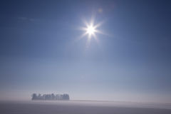 Inverno Sun Fotografie Stock Libere da Diritti