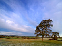 Inverno Sun Imagem de Stock Royalty Free