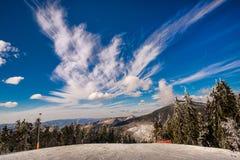Inverno surpreendente Fotografia de Stock Royalty Free
