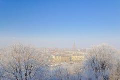 Inverno a Torino. Fotografie Stock