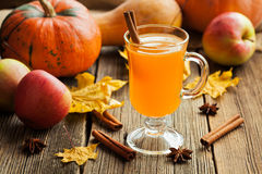 Inverno tradizionale sano caldo del sidro di mela Fotografia Stock Libera da Diritti