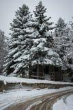 Inverno a Trikala Korinthias, il Peloponneso, Grecia Immagine Stock