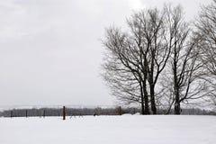 Inverno triste Fotografie Stock