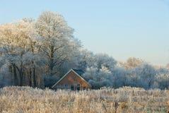Inverno a Twente Fotografie Stock Libere da Diritti