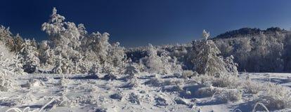 Inverno in ural del sud Fotografie Stock