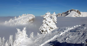 Inverno vago immagine stock libera da diritti