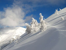 Inverno vago fotografia stock libera da diritti