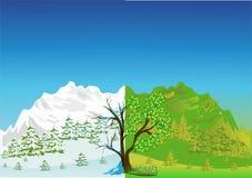 Inverno - verão Imagens de Stock