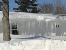 inverno Winderland Imagem de Stock Royalty Free