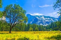 Inverno a Yosemite Fotografie Stock