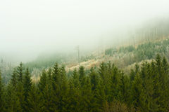 Inverse weather. Autumn inverse weather in Beskydy, Moravia royalty free stock photography
