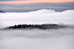 Inversion in autumn Royalty Free Stock Photo
