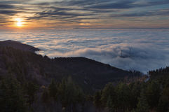 Inversion fog in black forest Stock Image