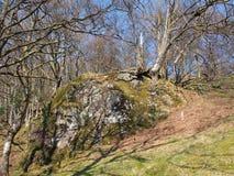 Inversnaid, Naturreservat Lizenzfreies Stockbild