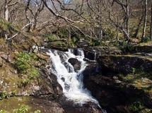 Inversnaid, Wasserfälle lizenzfreie stockfotos