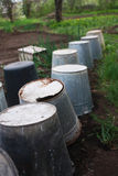 Inverted buckets in the garden. A number of old inverted buckets in the garden Royalty Free Stock Photo