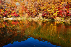 Inverted reflection in water of autumn hills Stock Photography