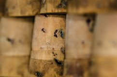 Inverted Vial Corks Standing in a Row. Inverted Vial Cork Stoppers Standing in a Row Royalty Free Stock Image