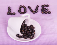 Inverted white cup with black currants Stock Image