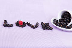 Inverted white cup with black currants with an inscription Stock Photos