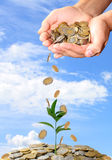 Invest money concept stock photography