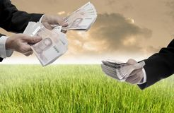 Invest in rice farm concept. Businessman offer money for farm royalty free stock image
