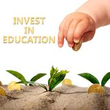 Invest in yourself. Hand with coin and plants royalty free stock photo