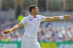 The Investec Ashes First Test Match Day Five Stock Images
