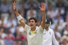 The Investec Ashes First Test Match Day One Stock Photo