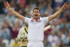 The Investec Ashes First Test Match Day One Royalty Free Stock Image