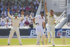 The Investec Ashes First Test Match Day Three Royalty Free Stock Images