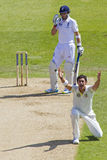 The Investec Ashes First Test Match Day Two Royalty Free Stock Photos
