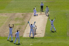 The Investec Ashes First Test Match Day Two Royalty Free Stock Images