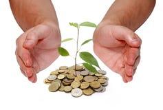 Investeer geldconcept stock foto's