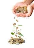 Investeer geldconcept stock afbeelding