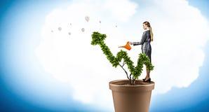 Investeer om uw inkomens te verhogen Gemengde media stock afbeelding
