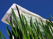 Investering (concept) Royalty-vrije Stock Afbeeldingen