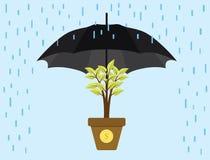 Investeringen investerar skyddsparaplyet skyddar det guld- myntet för träd Arkivfoton