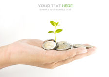 Investeringsconcept royalty-vrije stock foto