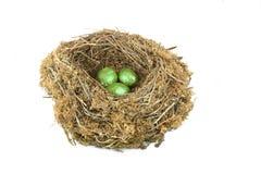 Investieren Sie im Grün Lizenzfreies Stockfoto