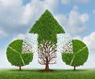 Investierung für Wachstum Stockbilder