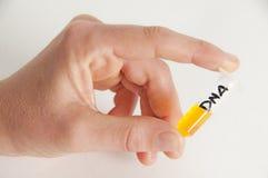 Investigação científica da química do ADN Imagens de Stock Royalty Free