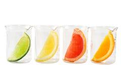 Investigación alimentaria - mezcla colorida de la fruta cítrica imagen de archivo libre de regalías