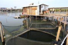 Investigación común de los pescadores en acuicultura Fotos de archivo